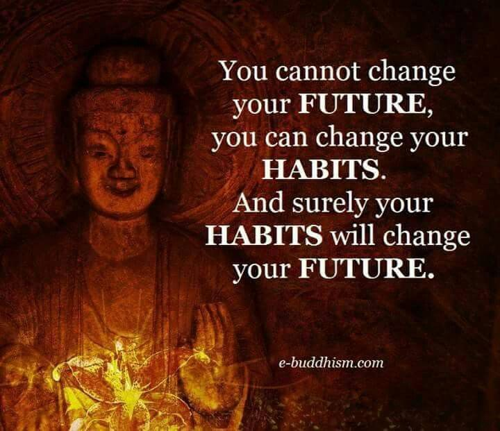 3182 Best Buddha Quotes Images On Pinterest