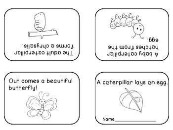1000+ images about Butterflies-kindergarten on Pinterest | Gardens ...