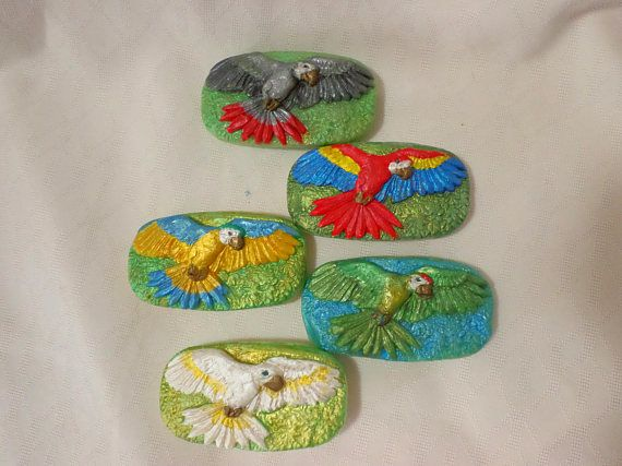 Parrot Soap (Soap for Humans not Parrots)