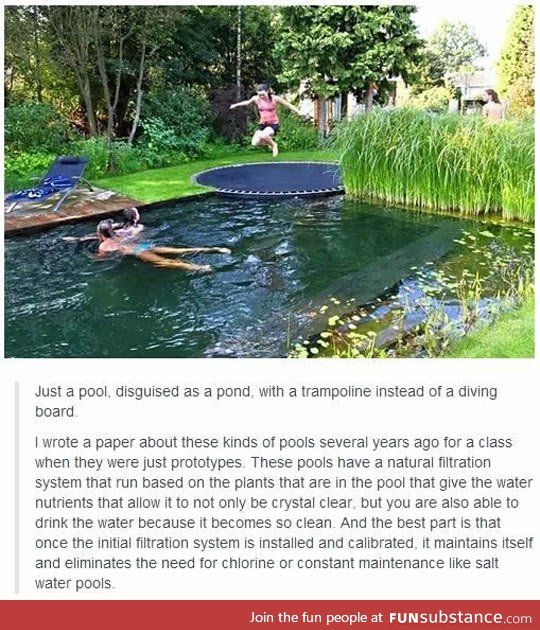 environmentally friendly pool. How cool if it really works