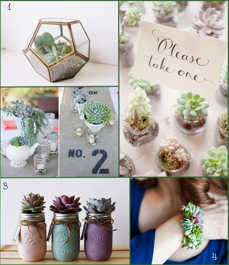 sofia plana photography top 5 succulents wedding decoration