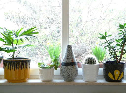Variety of different containers is a very cute idea.