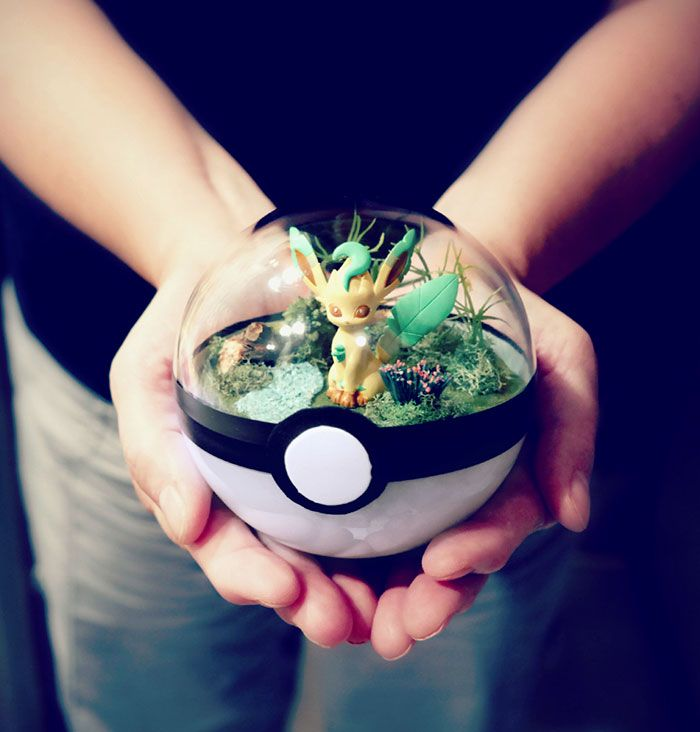 poke-ball-terrarium-pokemon-the-vintage-realm-2-57f3a8260fdd9__700