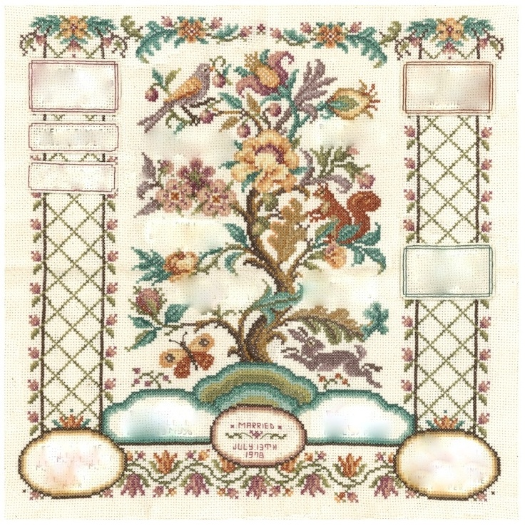 50 best FAMILY TREE-TEMPLATES images on Pinterest Family tree - blank family tree template