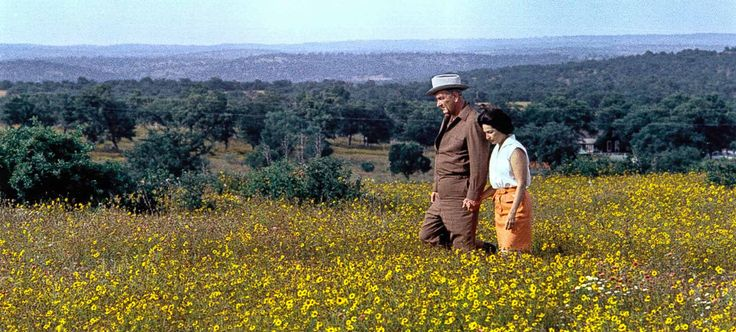 President Lyndon B. Johnson & Ladybird Johnson are pictured walking through a field of wildflowers near the present day location of the Lyndon B. Johnson State Park & Historic Site — Photo by the Texas Parks & Wildlife Department