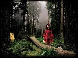 red riding hood photographer - Google Search