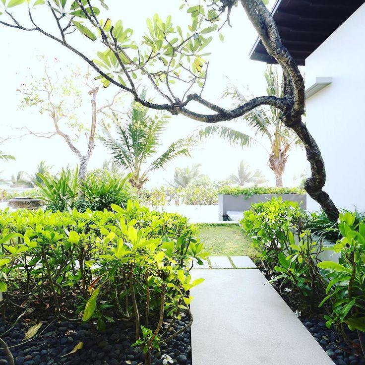 The beautiful garden and view from #alilavillassoorivilla507 #alilahotels #alilatime #alilavillassoori #roomcritic #luxurylife #luxuryhotel #luxuryvilla #bali #balilife