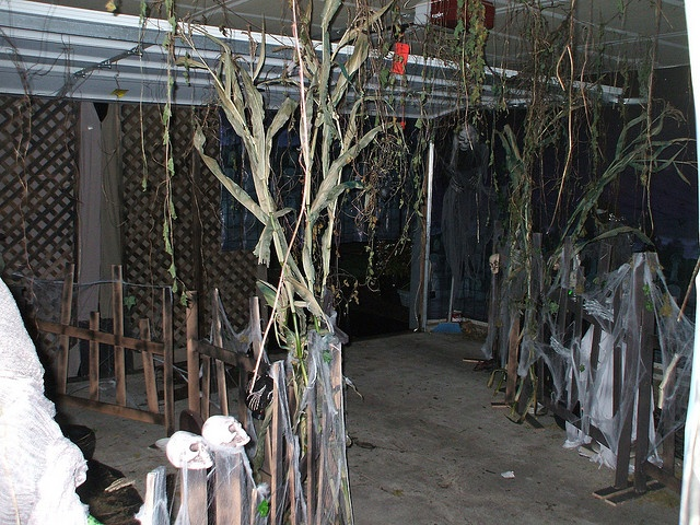 Halloween swamp 10 handpicked ideas to discover in for Haunted woods ideas