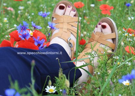 Provate per voi: #scarpe Easy'n Rose di #Relaxshoes  #fashion #fashionblog #fashionblogger #moda