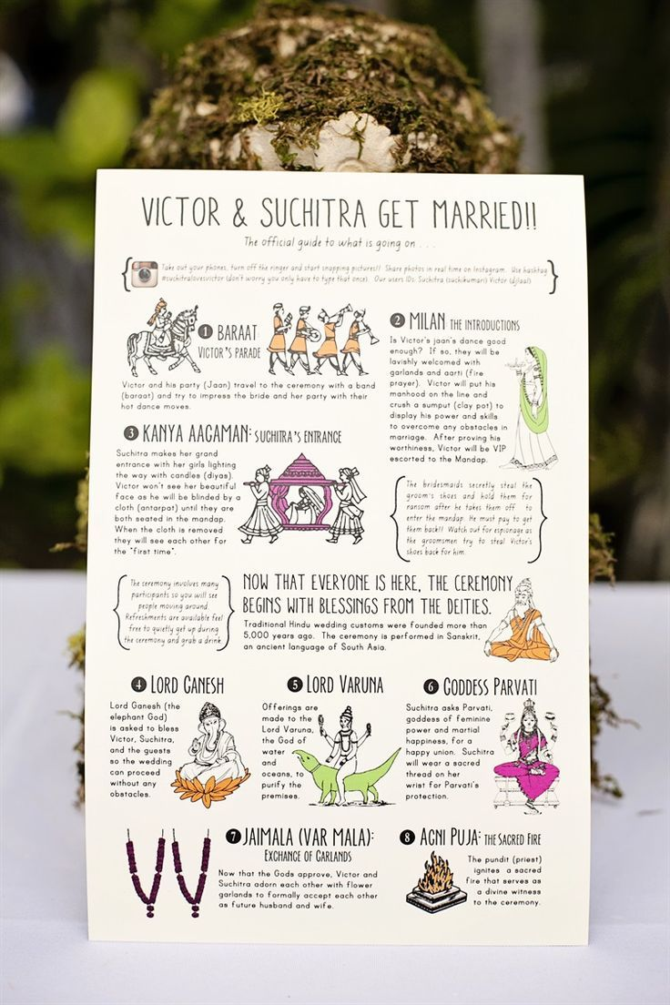 cute wedding infographic program to explain what happens at an Indian wedding