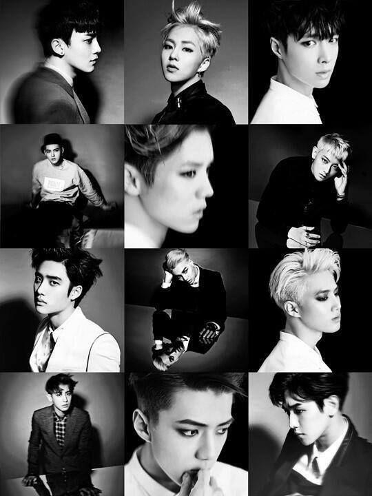 Black and White EXO