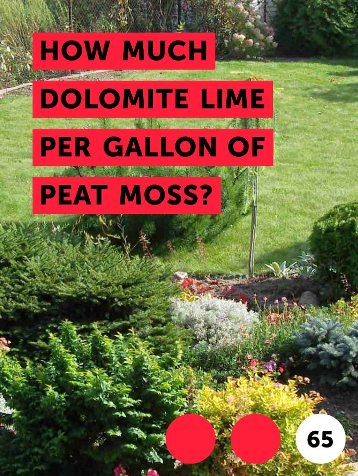 Learn How Much Dolomite Lime Per Gallon Of Peat Moss How To Guides Tips And Tricks Plants Compost Fertilizer