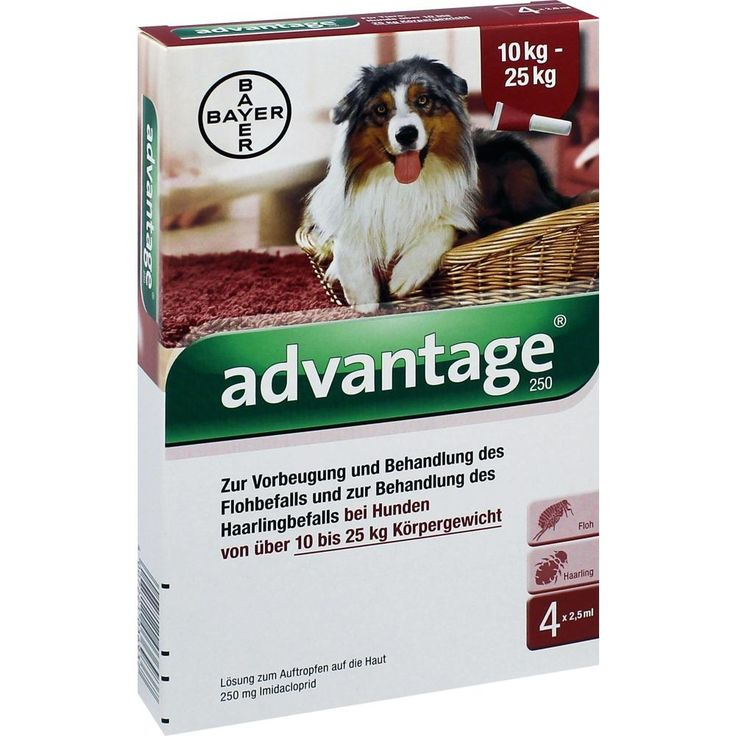 ADVANTAGE 250 Lösung für Hunde 10-25 kg:   Packungsinhalt: 4 St Lösung PZN: 08613328 Hersteller: Bayer Vital GmbH GB - Tiergesundheit…