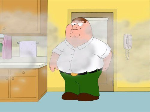 word to the wise keep peter griffin out of your kitchen familyguy: guy kitchen meg