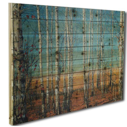 Gallery 57 'Birch Trees' Photographic Print on Wood