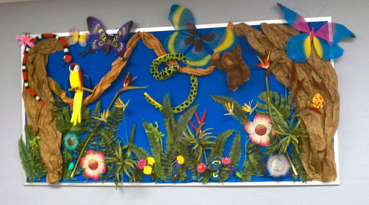 rain forest decoration | Rainforest Classroom Decorations