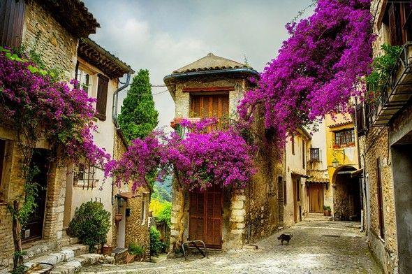 Fransa'daki Provence