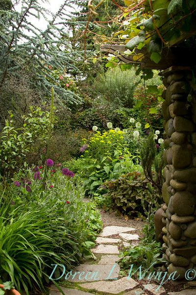 Cheryl & Rick's Enchanting Garden - Eye of the Lady - Horticultural and Stock Photography - Doreen L Wynja