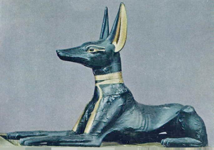Oito milhões de múmias caninas foram encontradas em Memphis.