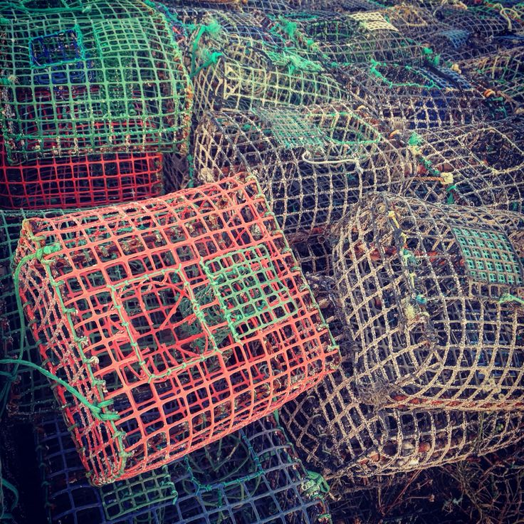 Fisherman Lagos Portugal Algarve