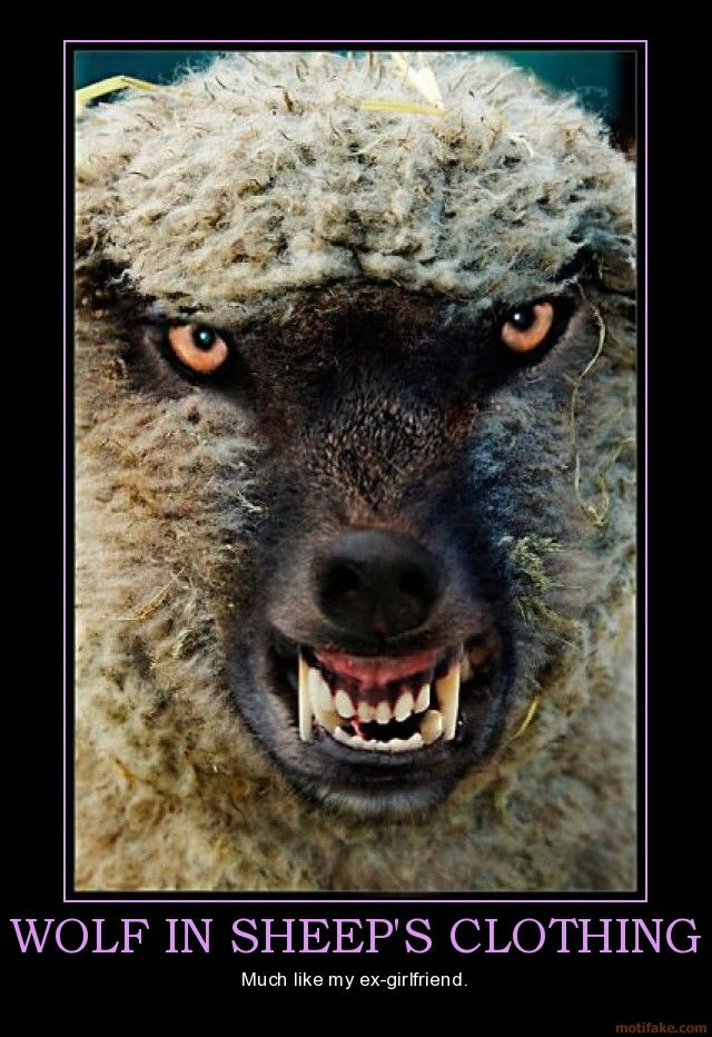 narcissistic rage | wolf-in-sheeps-clothing-or-ex-girlfriend-but-whos-counting ...