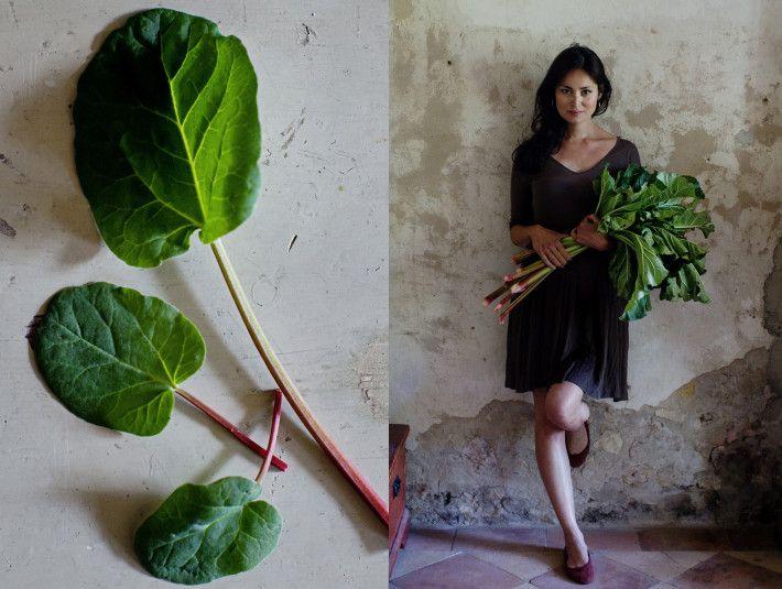 Rhubarb & Sorrel.