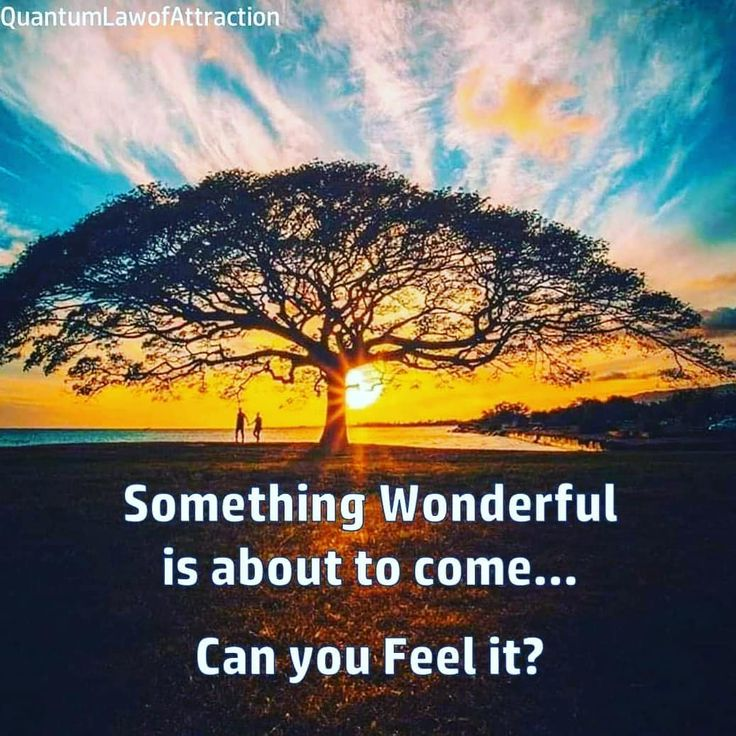 How to manifest the person you want Law of attraction