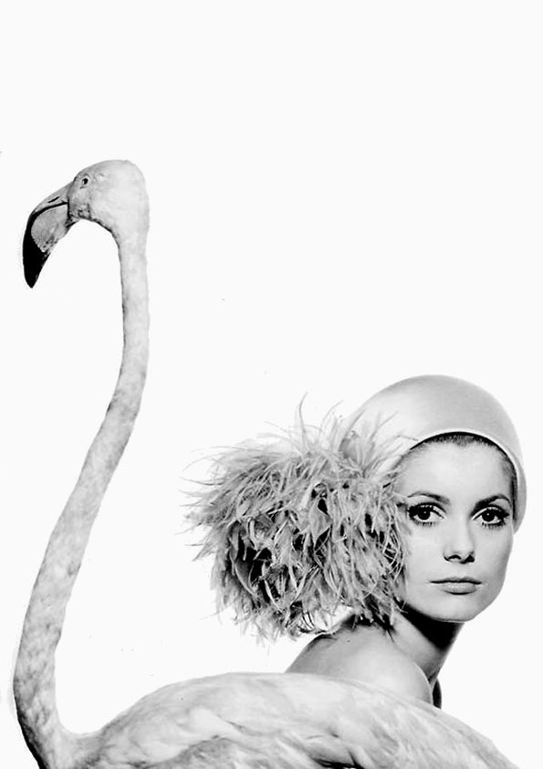 Catherine Deneuve photographed by David Bailey.
