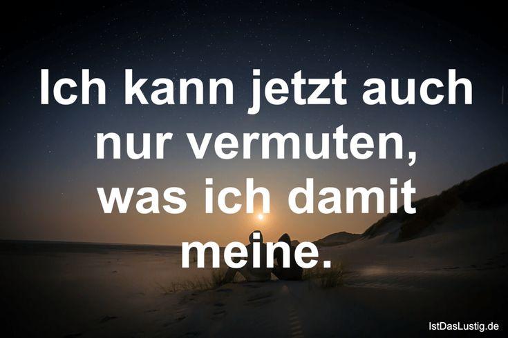 Ich kann jetzt auch nur vermuten, was ich damit meine. ... gefunden auf https://www.istdaslustig.de/spruch/832 #lustig #sprüche #fun #spass