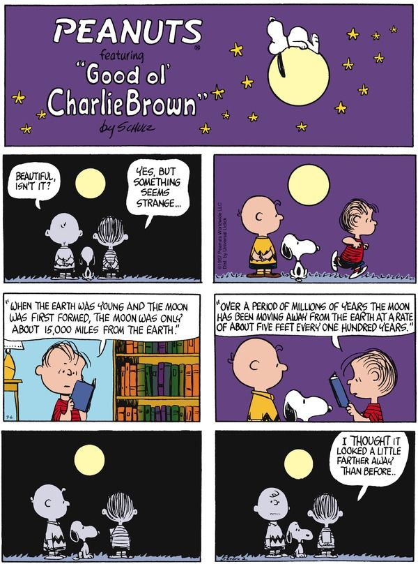 Peanuts for 7/6/2014 | Peanuts | Comics | ArcaMax Publishing