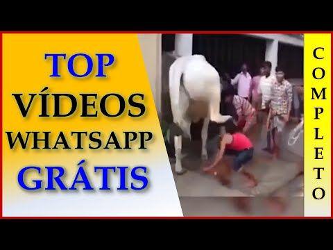 Videos Engraçados Para Whatsapp Gratis - Vídeos Engraçados do Whatsapp -...
