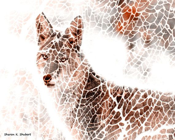 Coyote Photomontage Art Southwestern Totem by GrayWolfGallery