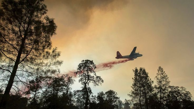 The Latest on wildfires burning in the western U.S. and Canada. (all times local):  8 a.m.  Wildfires barreled across the baking landscape of the western U.S. and Canada, destroying a smattering of homes, forcing thousands to flee and temporarily trapping children and counselors at a... - #Burn, #Canada, #Latest, #TopStories, #Wildfires