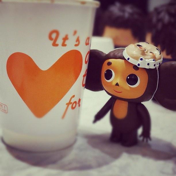 ♡Cheb LOVE♡ cheburashka