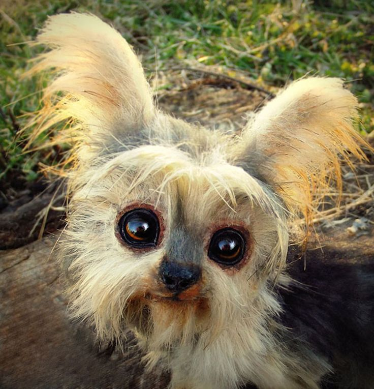 Best Toys Images On Pinterest Fantasy Creatures Art Dolls - Look like real baby animals actually incredibly realistic toys