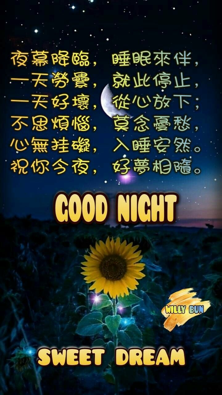 pin by 林忠平on 晚安 good night quotes night quotes sweet dreams