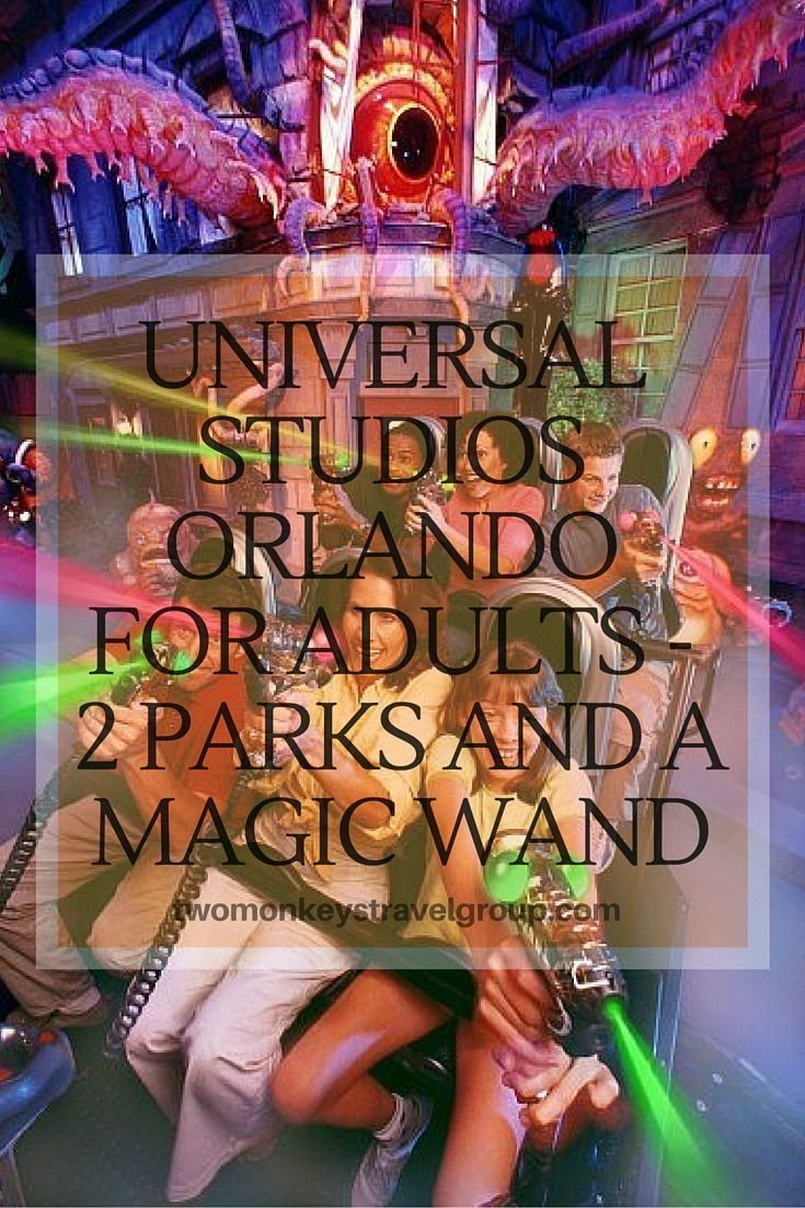 Universal Studios Orlando for Adults– 2 Parks and a Magic Wand. Also, if you are a Harry Potter fan, then this is the place to be! Don't forget to buy that Magic Wand the get the most out of the whole experience. I promise you, it will be memorable!  This trip was arranged by VISIT ORLANDO and I'm so happy that Universal Studios Orlando gave us Park-to-Park Admission tickets and Universal Express passes!