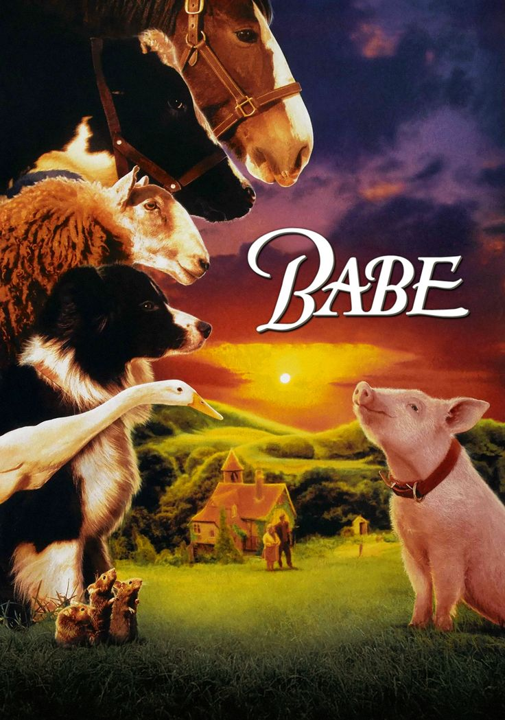 Babe (1995)   A little pig goes a long way