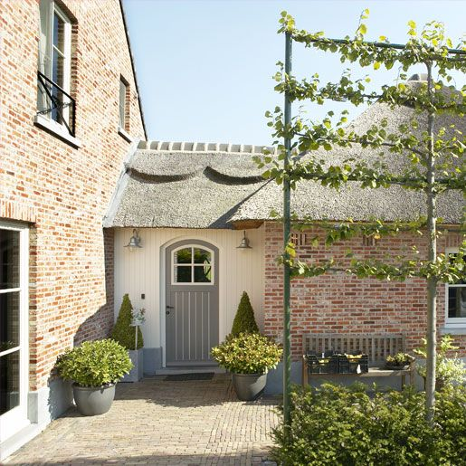 Belgian Style...greeted with an espalier tree