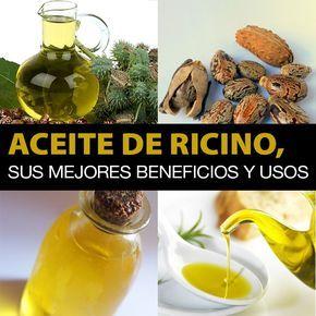 Aceite De Ricino, Sus Mejores Propiedades, Beneficios Y Usos - La Guía de las Vitaminas