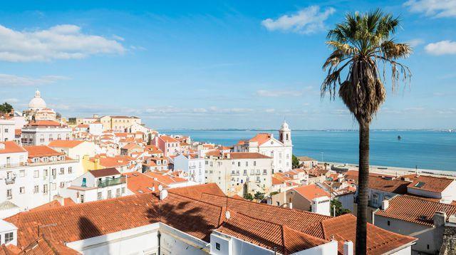 Lisbonne: les bonnes adresses dans la capitale portugaise