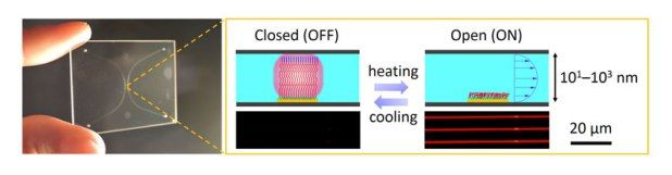 Advances in Engineering features: Soft Matter-Regulated Active Nanovalves Locally Self-Assembled in Femtoliter Nanofluidic Channels