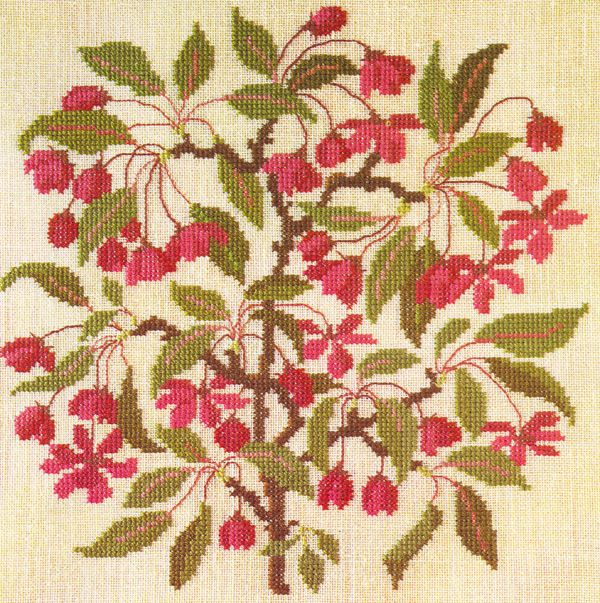 Gallery.ru / Фото #37 - Flowers and Berries in Cross Stitch - Mosca