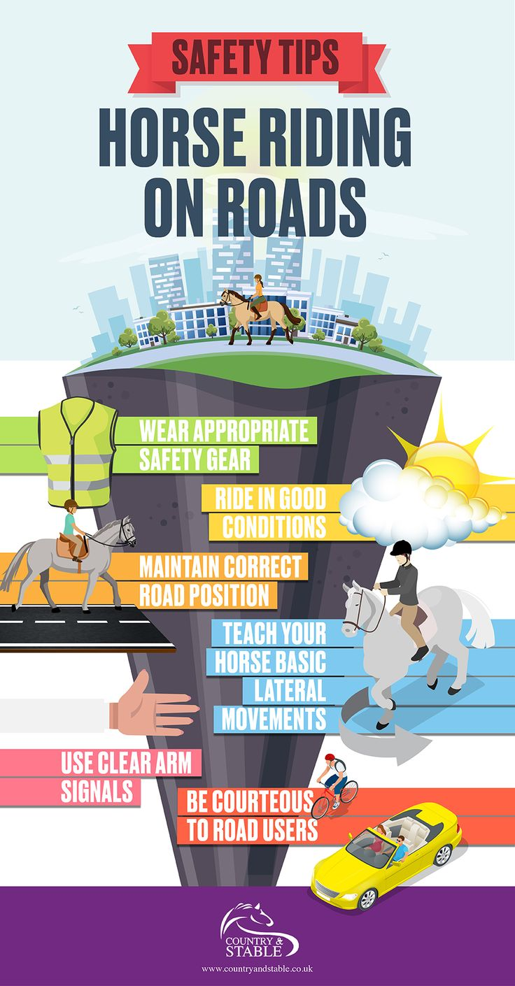 [Guest Blog] Top Safety Tips When Horse Riding On The Road  While its nice letting our horses stretch their legs with a ride around the field its sometimes necessary for us to head out onto the road for whatever reason. Obviously this brings with it some dangers and plenty of things that need to be considered to ensure you and your horse stay safe. If youre new to riding on the road havent done it in a while and need a refresher or youre teaching others check out the graphic below from…
