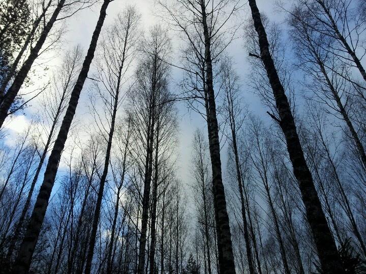 Sky in November morning