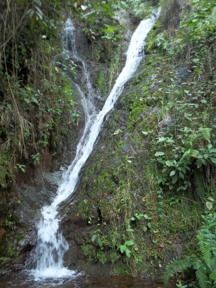 Hermosa caída de agua, aledaña al camino entre las veredas Palermo y Alto Cáceres.