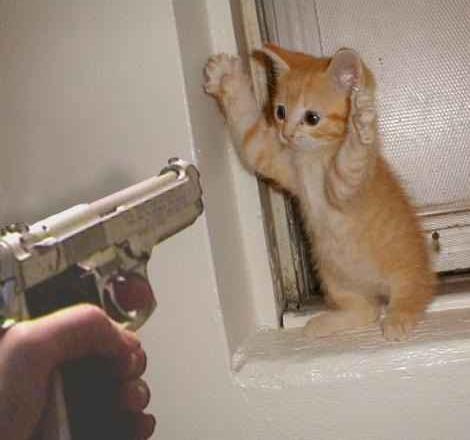 poten om hoog of ik schiet!!!