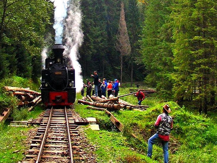Steam Train in Maramures county, Romania