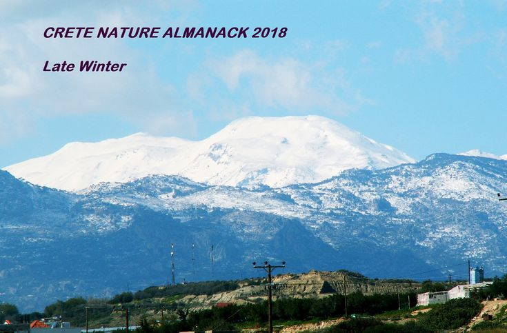 https://flic.kr/s/aHskvtCm5W | 147 Crete Nature Almanack - Late Winter | A Print Out and Keep special this week with the first of an 8 part #CreteNature Almanack bit.ly/2nvHKjE