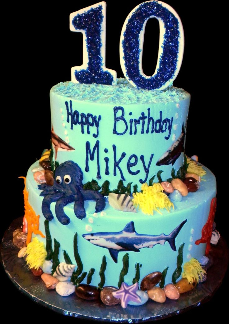 Best Th Birthday Cake And Extras Images On Pinterest Th - 10th birthday cake